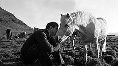 Излагая историю одиннадцатого чемпиона мира, документалисты нашли нетривиальный художественный ход — конем