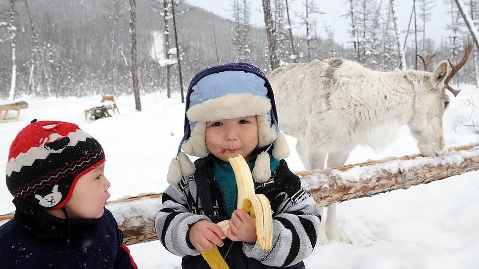 Сегодня в Эвенкии легче встретить банан зимой, чем эвенков в национальной одежде