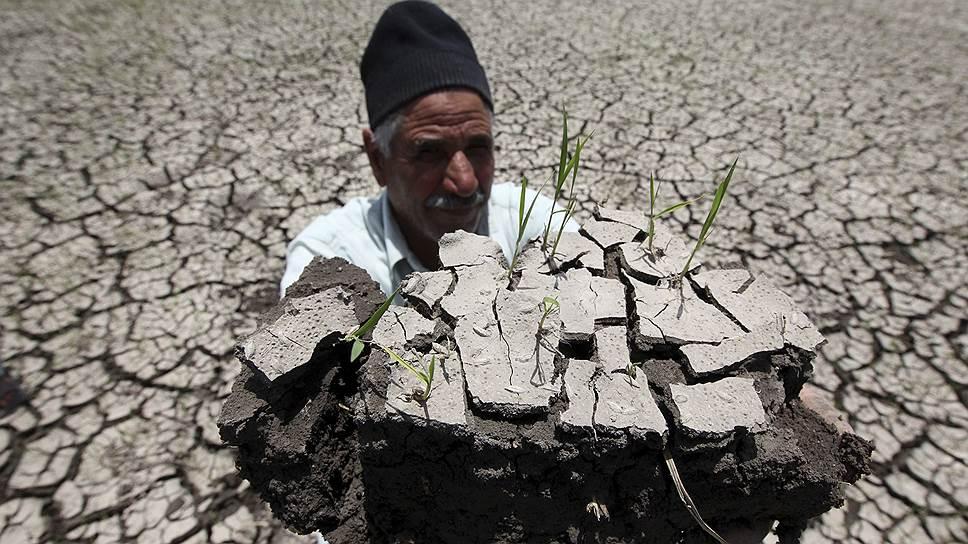 Египетские крестьяне боятся, что возведение эфиопской плотины приведет к недостатку нильской воды для нужд сельского хозяйства