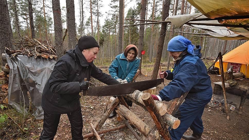 """Оборона Сунского бора может затянуться надолго, и местные """"партизаны"""" и волонтеры стараются заготовить побольше дров, пока не пришла зима"""