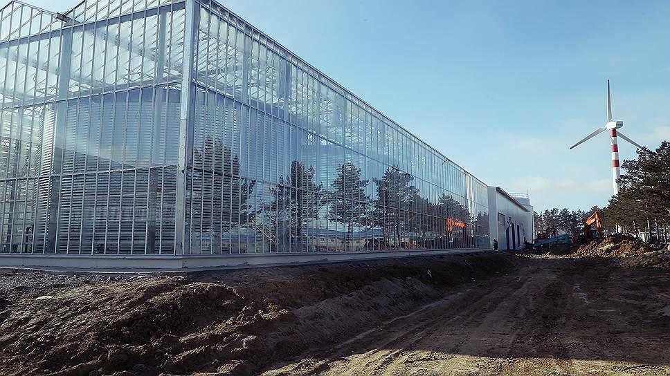 """Теплицы компании JGC Evergreen, построенные на территории опережающего развития """"Хабаровск"""",— единственный за последние годы японский проект в России, существующий не на бумаге"""