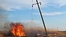 При сильном ветре горящие метелки тростника могут перелетать на 500 м — так огонь с подожженных полей доходит до границ Астраханского заповедника и нескольких региональных заказников буквально за полчаса