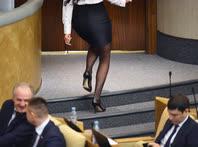 Депутатов отвлечь от работы не может ничего