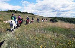 Equestrian and walking tourism in the Samarskaya Luka National Park.