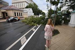 Consequences of a heavy rain. Fallen tree on the roadway on the Bolshaya Ordynka street.