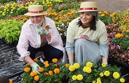 Opening of the annual Flower Festival in GUM.