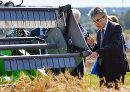 Demonstration of scientific developments of the Nemchinovka Federal Research Center for Wheat Growing.