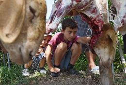 Muslims of Crimea celebrate Eid al-Adha (Feast of the Sacrifice).