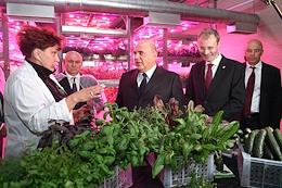 Russian Prime Minister Mikhail Mishustin's working visit to Anadyr.