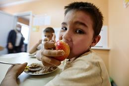 Organization of school lunches to provide fresh and hot meals for primary school students.