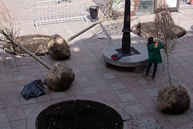 Restoration of the destroyed linden alley on the boulevard near Gostiny Dvor.