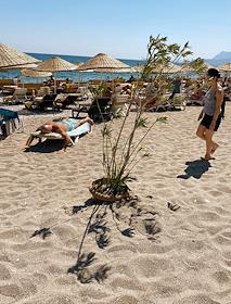 Views of Antalya.