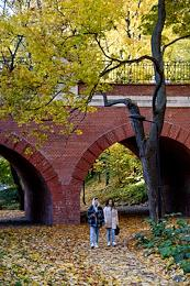 Genre photographs. Autumn in Moscow.